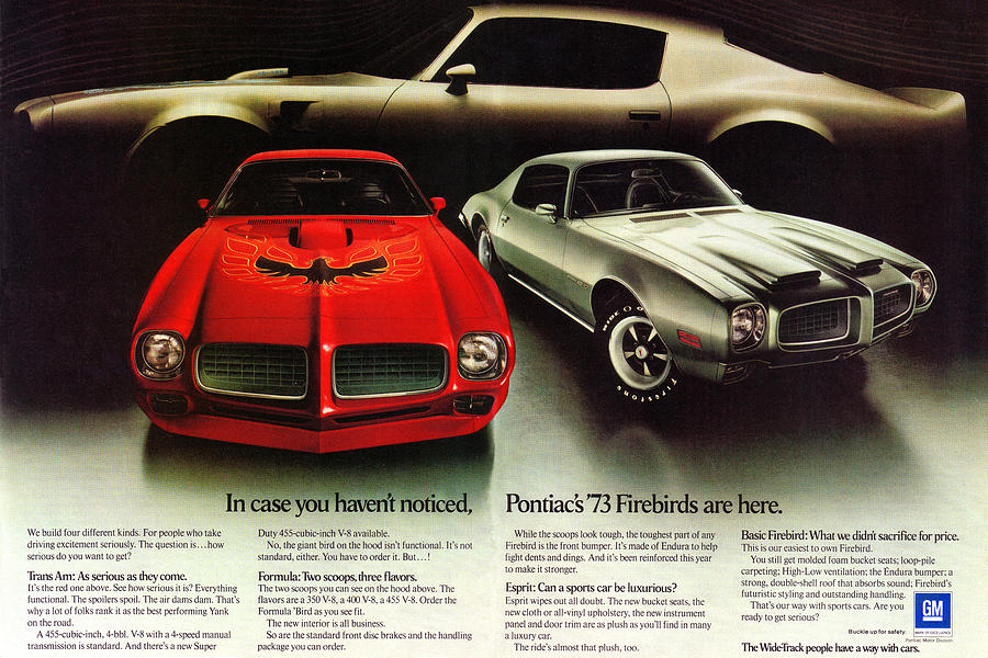 Motorcities The Early 1970s Pontiac Firebirds Were Great Looking Designs 2020 Story Of The Week
